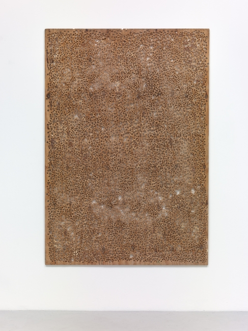 Untitled, 2013 perforated wood 180 x 125 cm